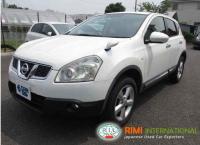Nissan DUALIS 2011